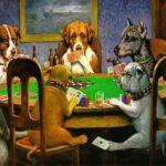 Hunde der spiller poker
